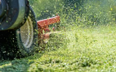 Advantages Of Ride On Mowers